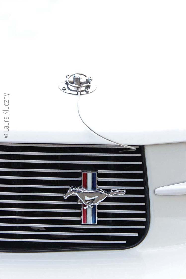 American Car: Weißer Mustang