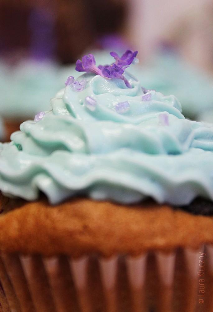 Etwas andere Blaubeer-Cupcakes, mit Lavendel