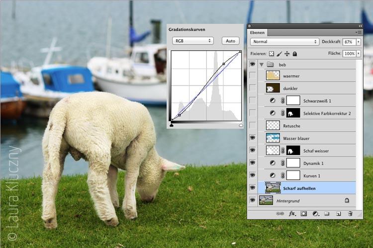 Schritt 1: Lamm aufhellen und farbliche Optimierung