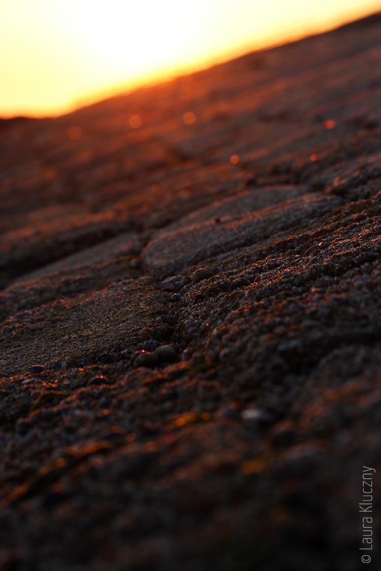 Deich im Sonnenuntergang