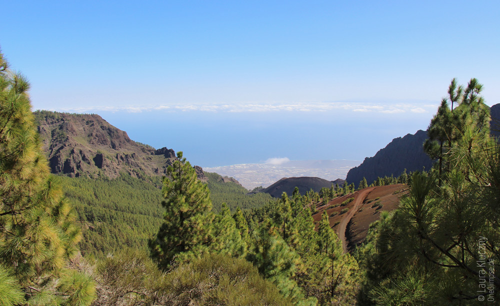 Anfang des Teide-Nationalparks