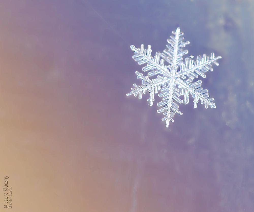 Makroaufnahme einer Schneeflocke – orange, blau