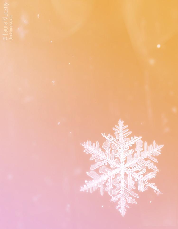 Makroaufnahme einer Schneeflocke – orange, rosa