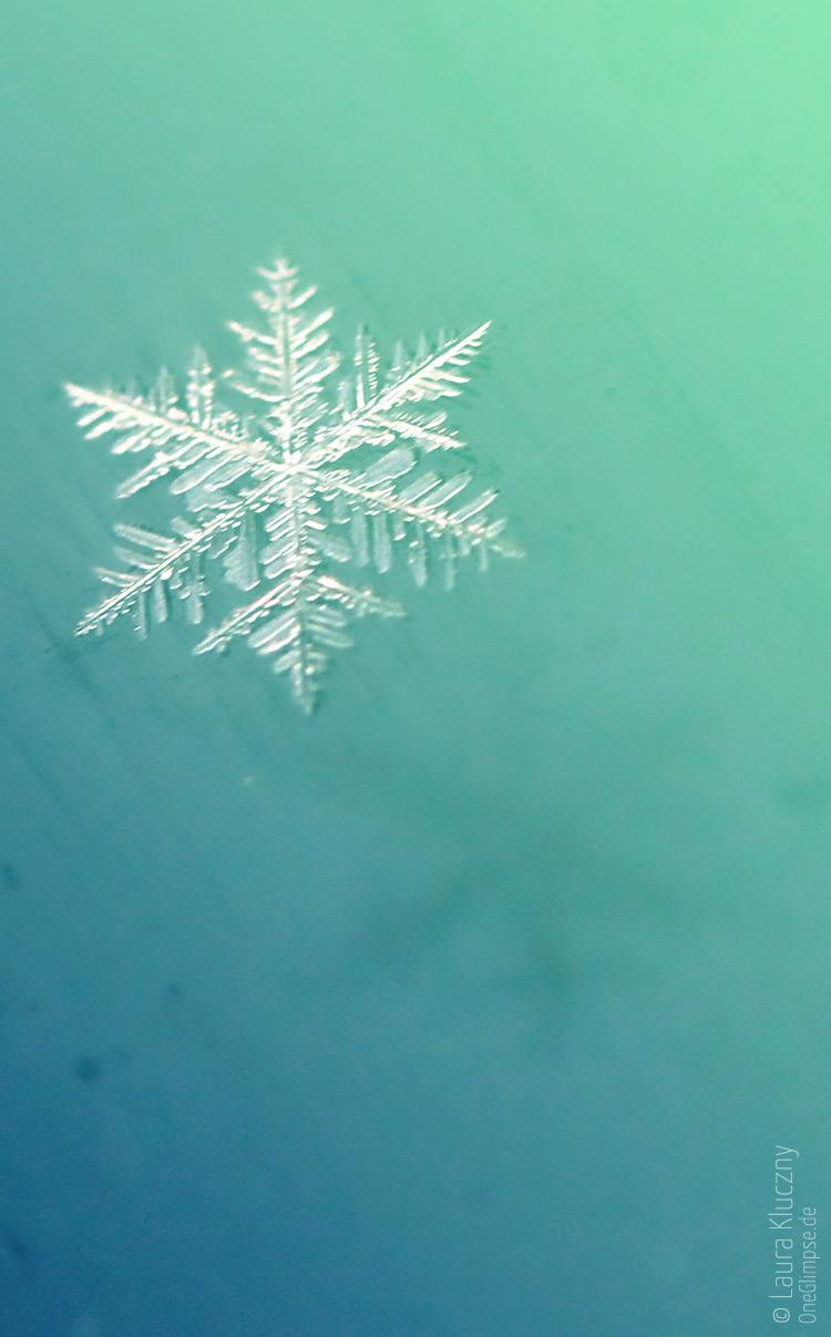 Makroaufnahme einer Schneeflocke – grün, blau