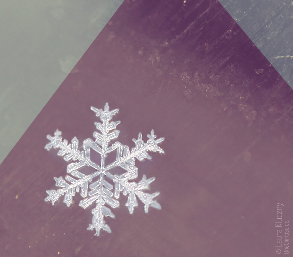 Makroaufnahme einer Schneeflocke – rot, grün