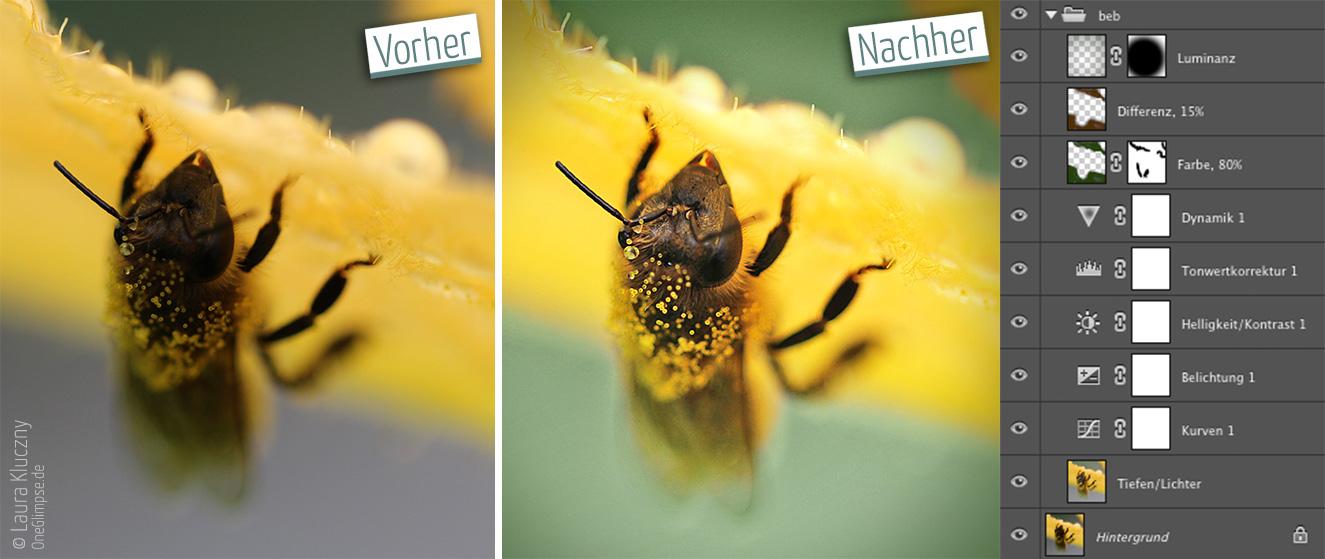 Vorher-Nachher: Makroaufnahme einer Biene unter einer Zucchini-Blüte