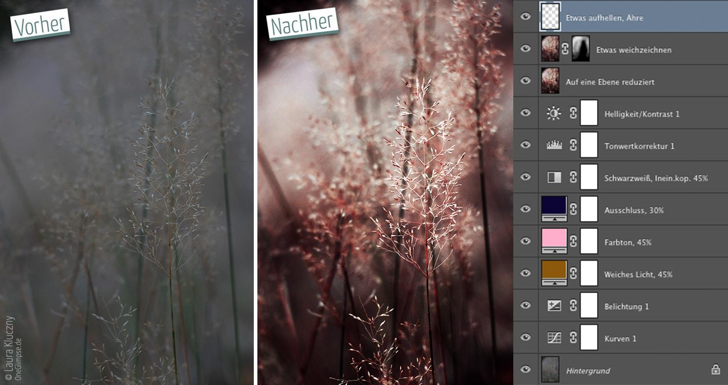 Vorher-Nachher: Langweiliges graues Bild mit Gräsern umgewandelt in einen interessanten Herbstlook