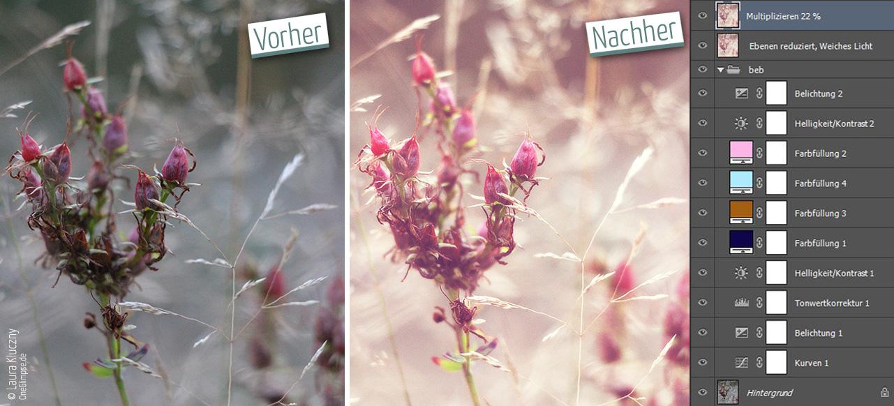 Vorher-Nachher: Buttercream-Effekt, Gräser und rote Blüten. Mit Photoshop-Ebenenpalette