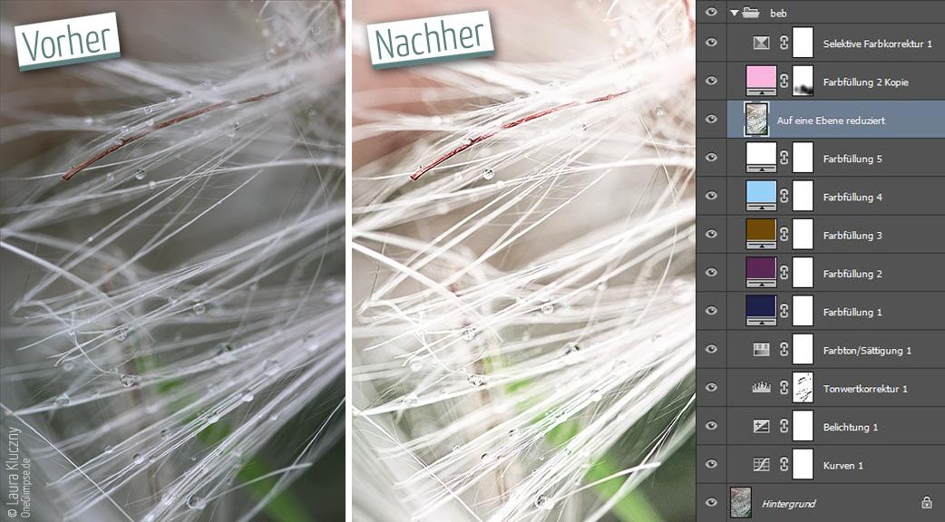 Vorher-Nachher: Makroaufnahme einer Polle, rosa-pastell. Mit Photoshop-Ebenenpalette
