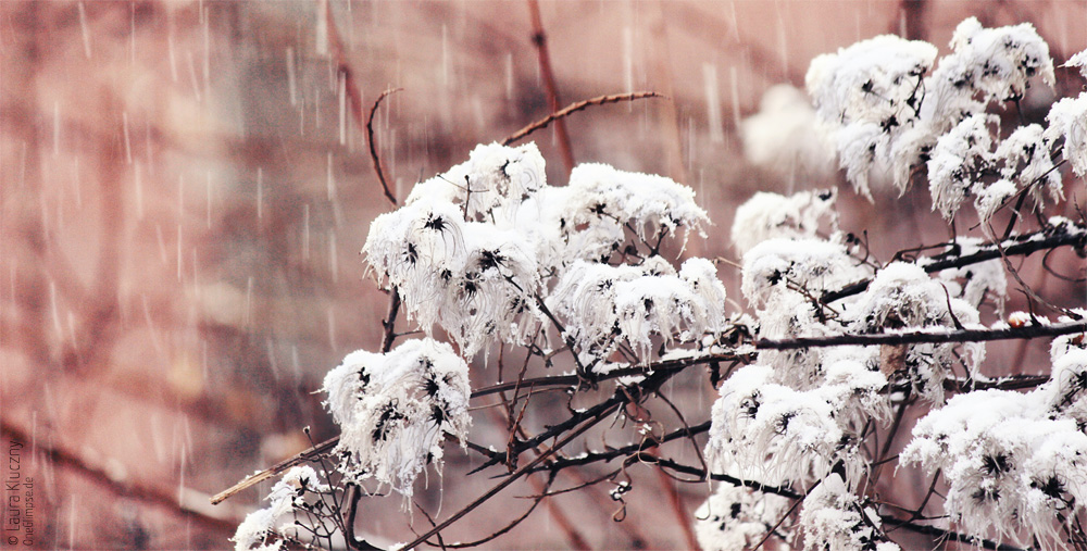 Leise rieselt der Schnee...
