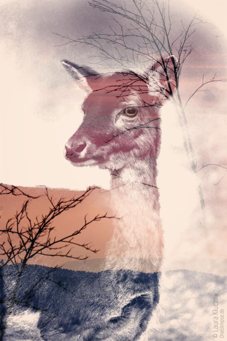 """""""Verträumt: Reh""""    Doppelbelichtung mit Photoshop: Reh kombiniert mit Ästen und Wald, pastellige und verträumte Farben"""