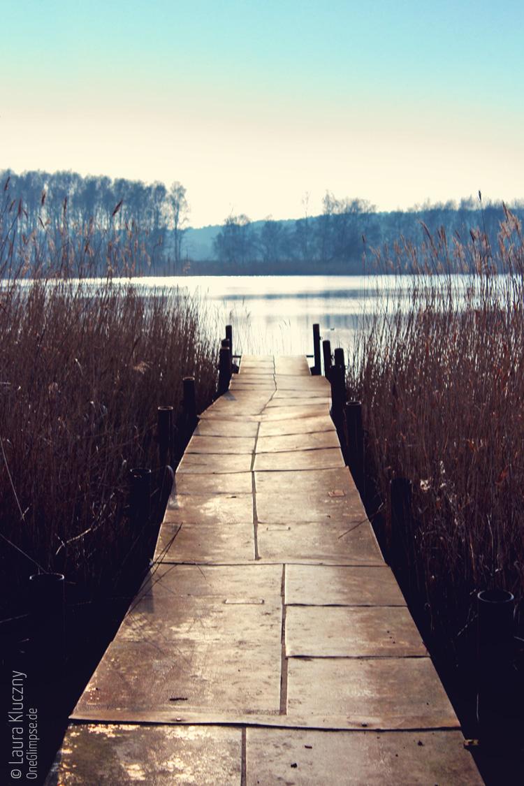 Radtour auf Usedom: Steg umrahmt von Schilf