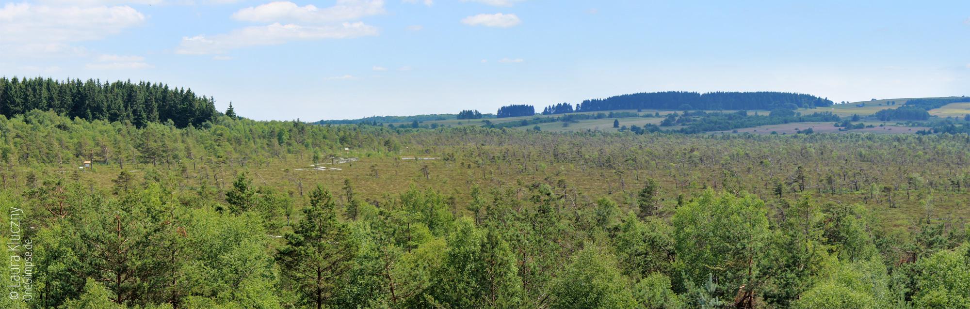 Rhön: Blick vom Aussichtsturm aufs Schwarze Moor, Panorama