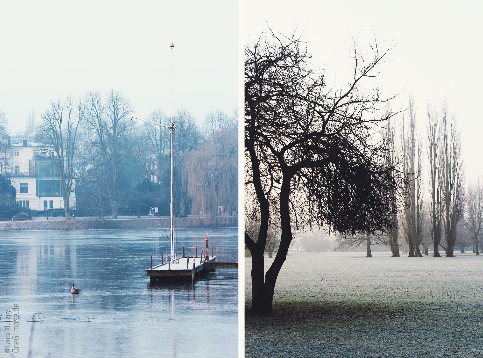 Alster in Hamburg: zugefrorenes Wasser, Frost