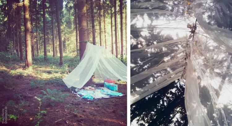 Waldpicknick Geburtstag, Picknick im Wald unter Baldachin