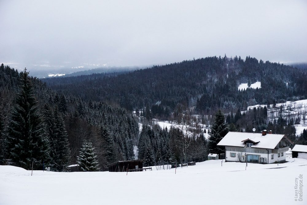 Mitterfirmiansreut: Blick auf die tschechische Seite auf den Bayerischen Wald/Sumava-Nationalpark