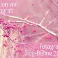 Aktion Fotografie-Blog-Bühne 2015