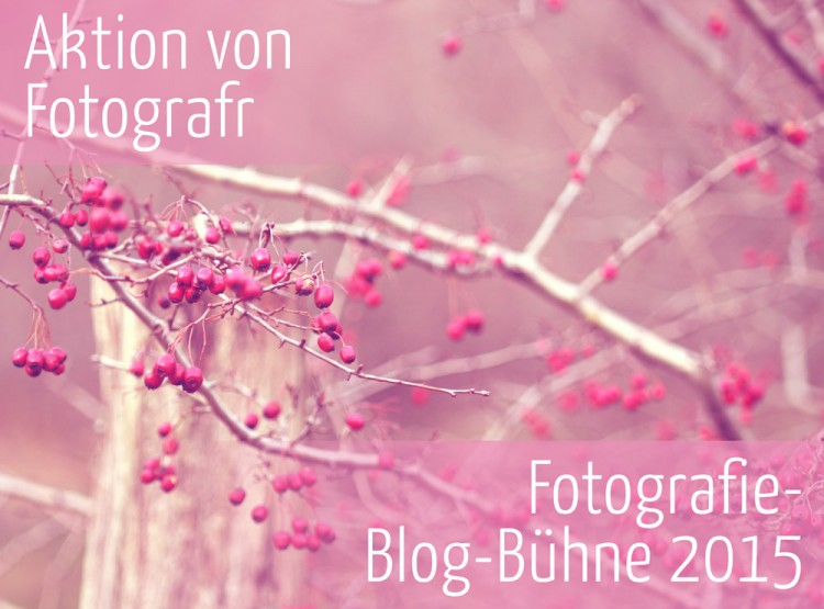 Aktion Fotografie-Blog-Bühne 2015