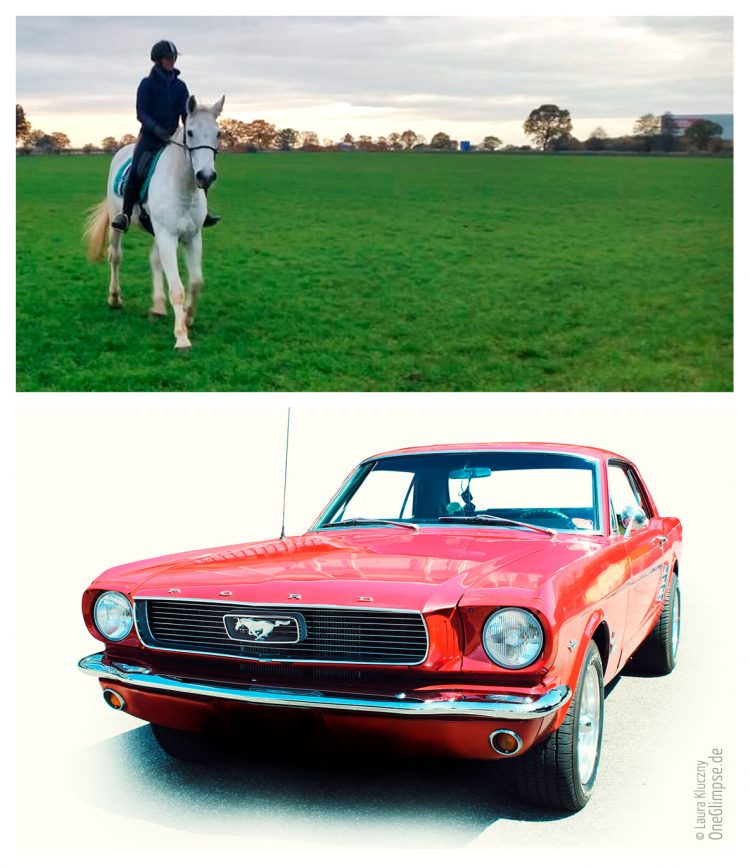 Wilhelm, Pony mal zwei, Ford Mustang rot, Miss Red K